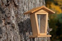 Alimentador do pássaro em uma árvore Imagens de Stock Royalty Free