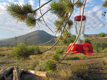 Alimentador do pássaro na paisagem da montanha Imagem de Stock