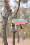 Alimentador do pássaro que pendura na árvore fotografia de stock royalty free