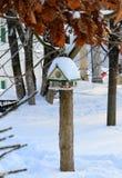 Alimentador dos pássaros Foto de Stock