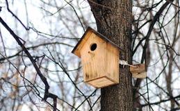 Alimentador dos pássaros na árvore na floresta Foto de Stock Royalty Free