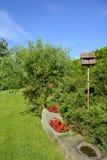 Alimentador en un jardín, República Checa, Europa del pájaro Imagen de archivo