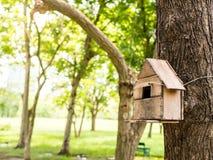 Alimentador para los pájaros y las ardillas en el parque fotos de archivo libres de regalías