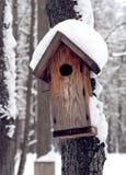 Alimentador para pássaros na floresta do inverno Imagem de Stock
