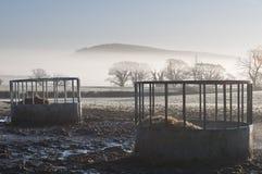 Alimentadores del ganado imagen de archivo