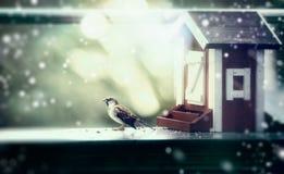 Alimentadores del pájaro del invierno bajo la forma de casa y gorrión en el balcón, nevadas Imagen de archivo libre de regalías