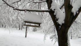 Alimentadores do pássaro no inverno com neve vídeos de arquivo