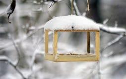 Alimentadores do pássaro que penduram em um ramo, nevando Foto de Stock