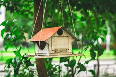 Alimentadores para pássaros no parque da cidade Fotos de Stock Royalty Free