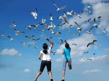 Alimentando os pássaros Imagens de Stock Royalty Free