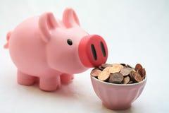 Alimentando seu banco piggy Fotos de Stock