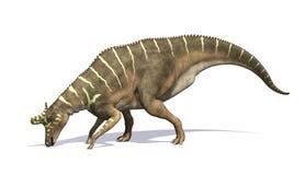 Alimentation de dinosaure de Lambeosaurus Image libre de droits