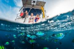 Alimentation des poissons Image libre de droits