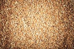 Alimentation saine. Lin oléagineux de graines de lin en tant que fond naturel de nourriture photographie stock