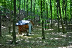 Alimentatore animale nella foresta, cura degli animali Fotografie Stock