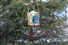 Alimentatore casalingo dell'uccello fotografia stock libera da diritti