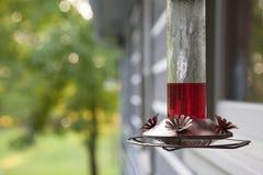 Alimentatore del colibrì Fotografia Stock