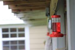 Alimentatore del colibrì dietro una casa immagine stock