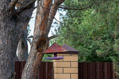 alimentatore dell'uccello che appende su un albero fotografia stock