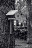 Alimentatore dell'uccello sull'albero Alimentatore vuoto Preoccupandosi per gli uccelli nella città immagine stock
