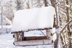 Alimentatore di legno del ` s dell'uccello nell'inverno il giorno soleggiato Fotografia Stock Libera da Diritti