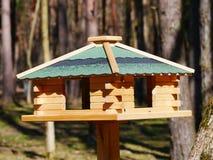 Alimentatore di legno dell'uccello in un parco nazionale un giorno soleggiato immagini stock