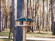 Alimentatore di legno dell'uccello in un parco nazionale un giorno soleggiato fotografia stock
