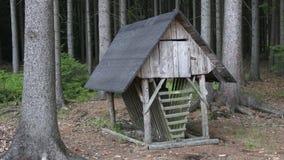 Alimentatore di legno tradizionale dei cervi in mezzo ad una foresta archivi video