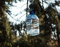 Alimentatore di plastica per gli uccelli fotografie stock libere da diritti