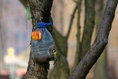 Alimentatore di ripiego dell'uccello fotografie stock libere da diritti