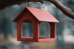 Alimentatori dell'uccello in parco fotografia stock