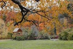 Alimentatori per gli uccelli nel parco di autunno Immagini Stock Libere da Diritti