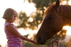 Alimentazione dei bambini sveglia il suo cavallo bello Immagine Stock Libera da Diritti