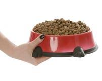 Alimentazione del cane Fotografie Stock