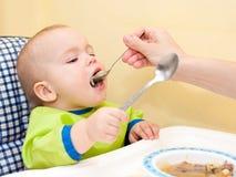 Alimentazione del cucchiaio Fotografia Stock