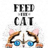 Alimente o gato Vector a ilustração com rotulação tirada mão no fundo da textura Fotografia de Stock Royalty Free