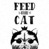 Alimente o gato Vector a ilustração com rotulação tirada mão no fundo da textura Fotos de Stock