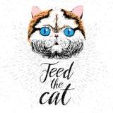 Alimente o gato Vector a ilustração com rotulação tirada mão no fundo da textura Imagens de Stock Royalty Free
