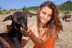 Alimenter de chèvre Photos stock