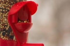 Alimentez les oiseaux Image libre de droits