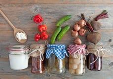 Alimenti fermentati sani immagine stock