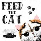 Alimenti il gatto Vector l'illustrazione con iscrizione disegnata a mano sul fondo di struttura Immagini Stock Libere da Diritti