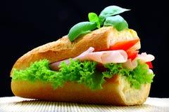 Alimenti industriali Fotografia Stock
