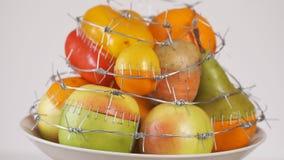 Alimenti OMG Il concetto OMG geneticamente si è alterato o alimento modificato video d archivio