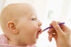 Alimenti per bambini d'alimentazione della madre al bambino fotografia stock