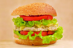 Alimenti a rapida preparazione dell'hamburger Fotografie Stock Libere da Diritti