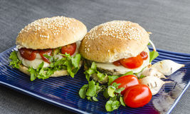 Alimenti a rapida preparazione vegetariani sani Fotografia Stock Libera da Diritti