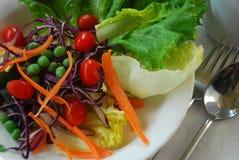 Alimenti vegetariani o puliti per la dieta e sano Fotografia Stock