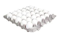 Alimento: 24 scatole di conteggio delle uova Fotografia Stock