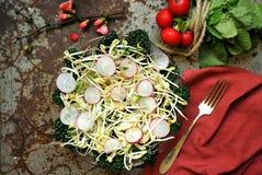Alimento alcalino, saudável: broto dos feijões de soja com salada do rabanete e da couve foto de stock